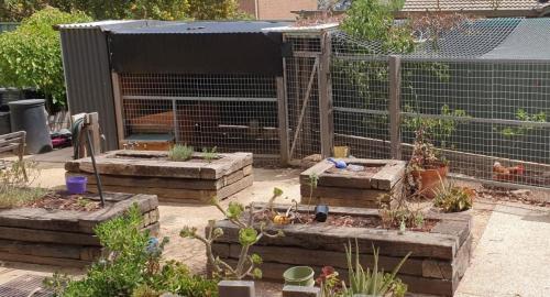 Chicken enclosure